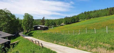 Hytte til leie i rolige omgivelser, nær fjellet.
