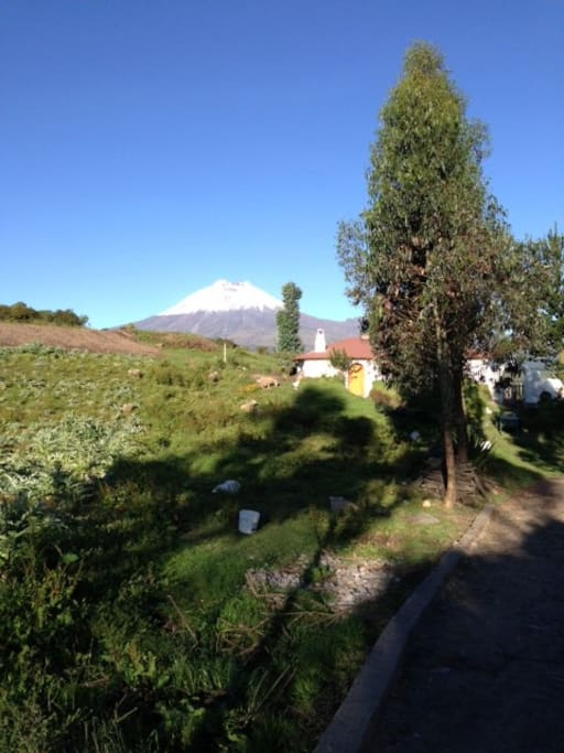 Right between Cotopaxi and Ilinizas