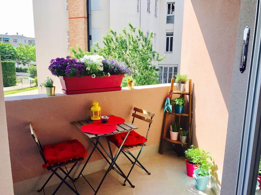 Petite terrasse colorée  avec son coin fleurie et plantes aromatiques