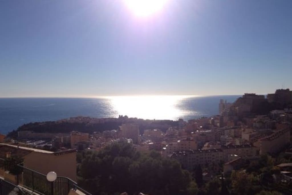 Panoramic sea view on the rock of Monaco and the Prince's Palace.