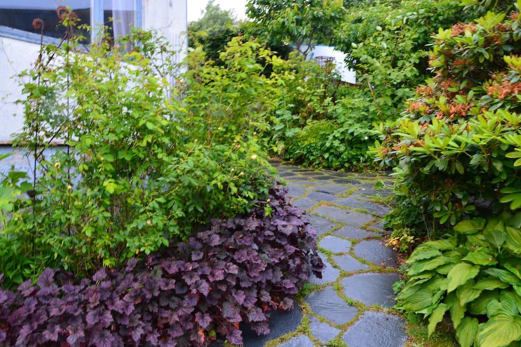Trädgårdsgången