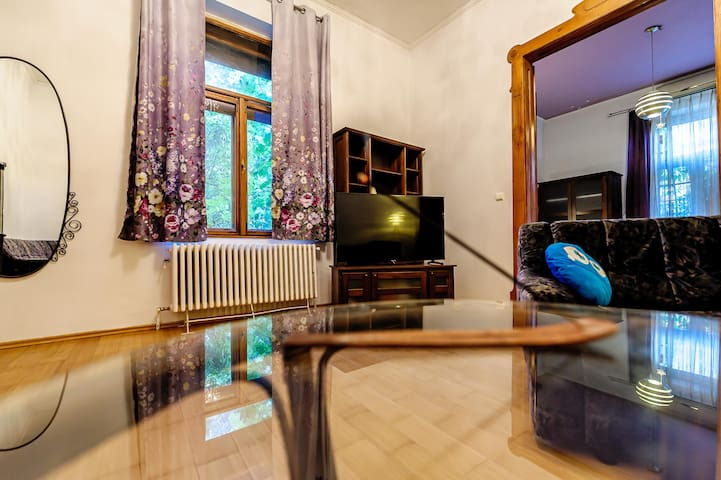 Quiet and relaxing apartment in the city center.