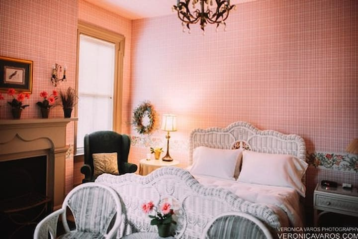 Private, Cozy, Historic Suite near Downtown - Pittsburgh - Bed & Breakfast