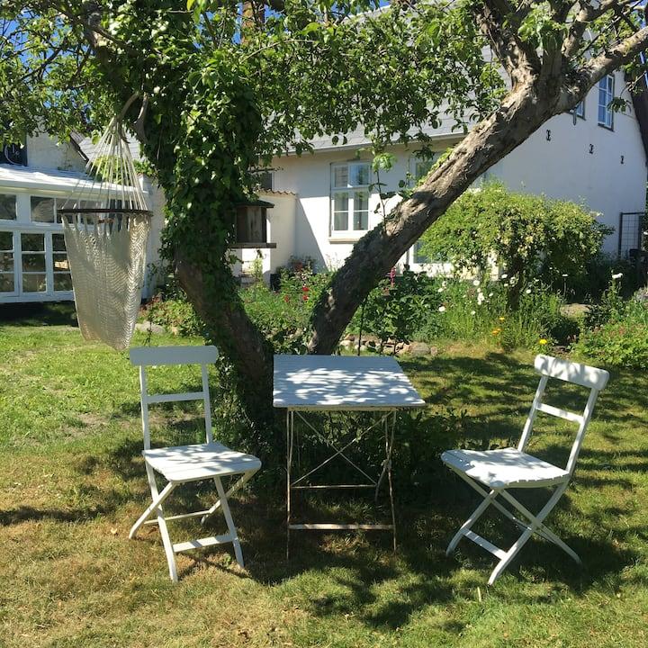 Hold ferie på Thurø i den gamle skole