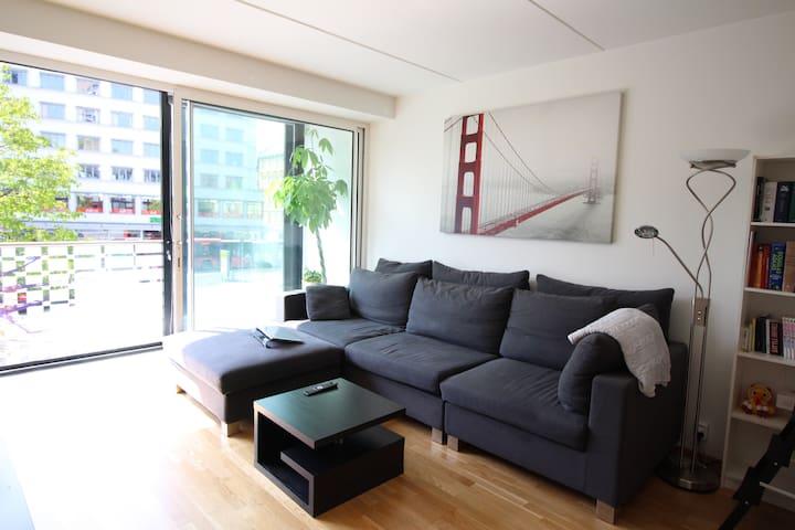 Your Roomy & Central Home in Oslo - Oslo - Lägenhet