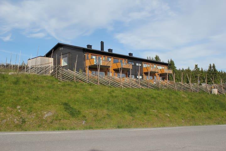Stor moderne leilighet  på Nordseter