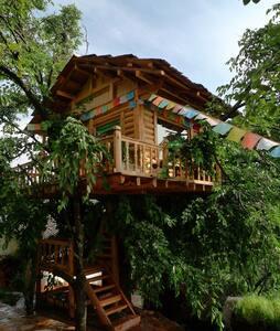 鼎雅树屋—让你享受另种美好的生活