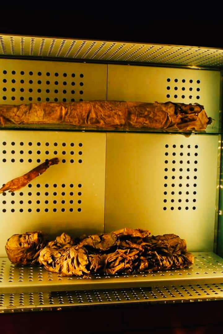 Momias Guanches /Mummies of Guanches