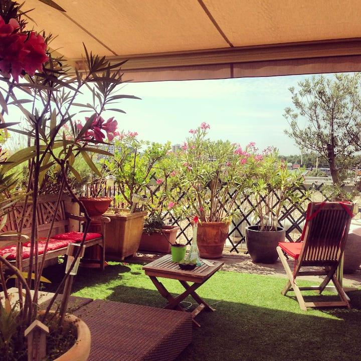 Vaste appartement  cosy sur les toits de Toulouse