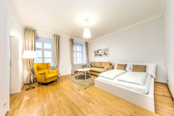 Beautiful Inner City Apartment (15)