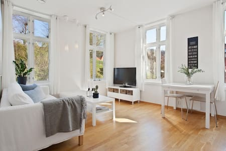 Charming apartment in the center of Bergen - Bergen
