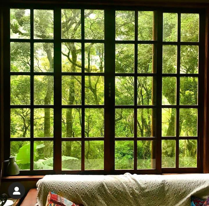 Casa na Floresta de Ybytuatã