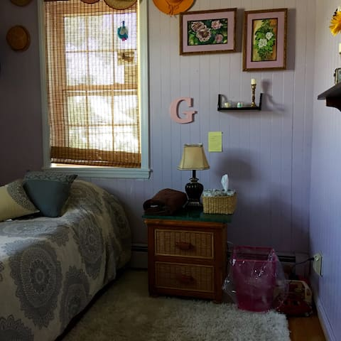 Charming small 15 minutes to JFK - Valley Stream - House
