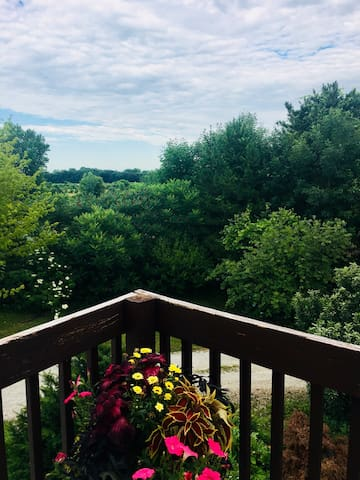 Robin's Nest-quiet, close to airport and Lambeau