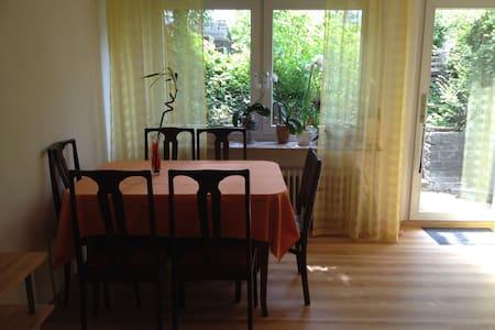 Einliegerwohnung 30m² Eppelheim bei Heidelberg - Eppelheim - Appartement