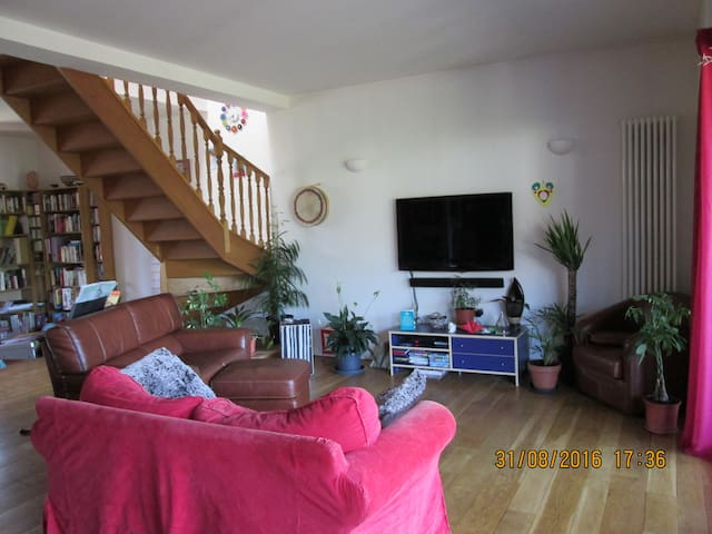 Beautiful house with garden in central Toulouse - Toulouse - House
