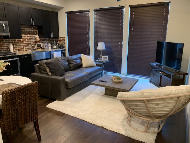1BR Apartment in the Heart of Downtown Houston