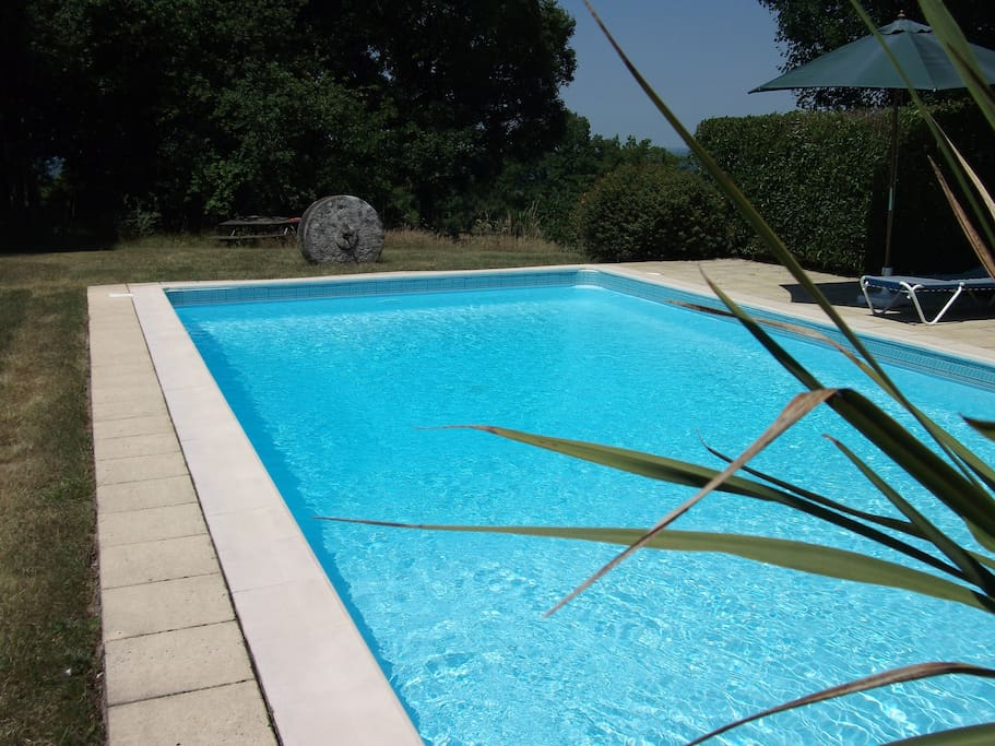 The private swimming pool