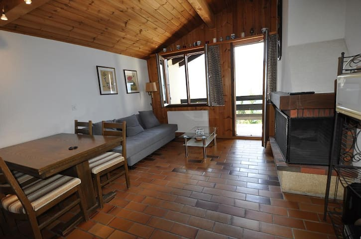 2 rooms appartment with a beautiful view on the mountains, near the skilift