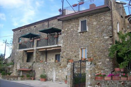 camera doppia con letto a castello - San Mauro Cilento