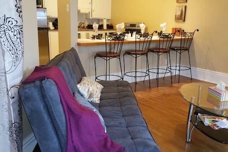 Gorgeous APT in heart of downtown
