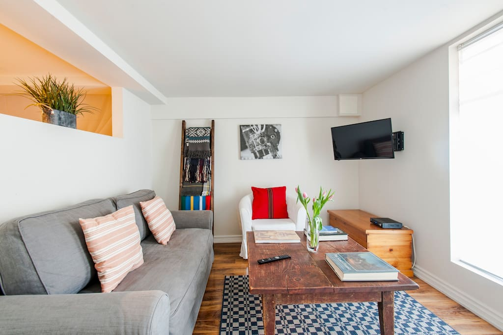 Large living room with very comfortable pull-out Queen, full cable incl HBO, all sports, Netflix access etc.