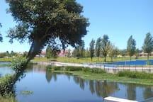 Zona Ribeirinha/Riverside