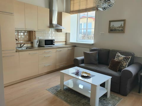Perfect location apartment in the Old Town