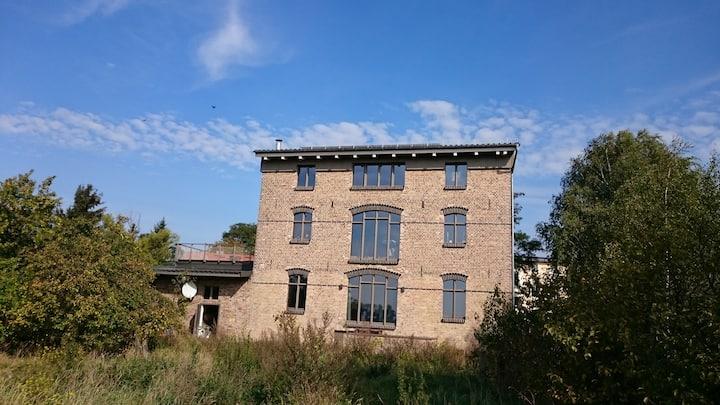 Yr hen Felin - the old mill