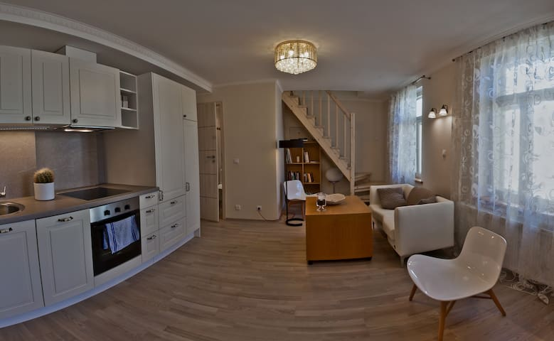 Beautiful apartment in Kadriorg - 塔林 - 公寓