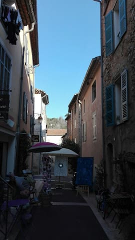 Nice apartment, with roofterrace - Valbonne - Apartamento