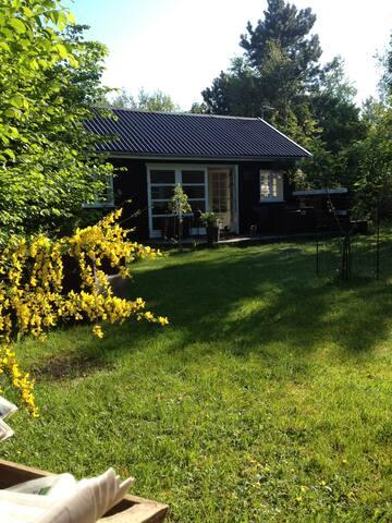 lille perle i Sejerøbugten - Vig - Cabin