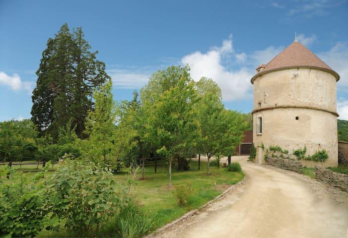 Gîte Crecerelle atypique près de Vézelay - Sermizelles