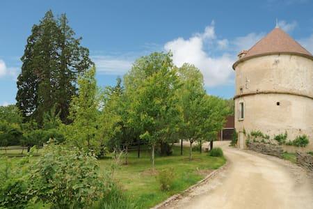 Gîte Crecerelle atypique près de Vézelay - Sermizelles - House