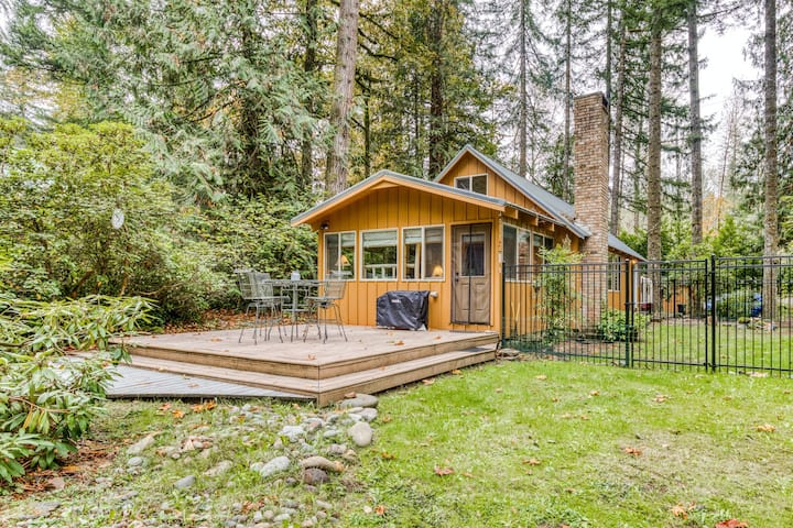 Dog-friendly cabin with free WiFi, pellet stove, mtn. views, and washer/dryer!