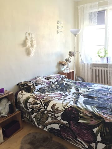 One bedroom apartment with 1 bed and one bed couch - Gothenburg