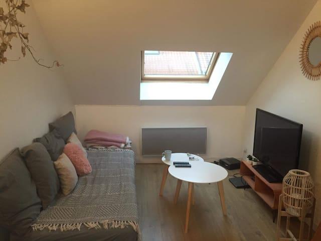 Appartement cosy à Lille Gambetta