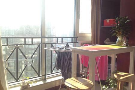 One-bedroom studio near 798/Lido