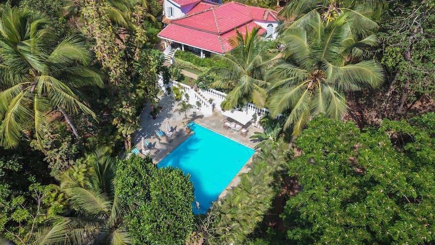 Luxury Villa in the Tropical Jungle of South Goa
