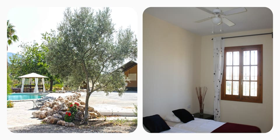 Andes room: Nice guest room in Andalusian Finca - Cártama