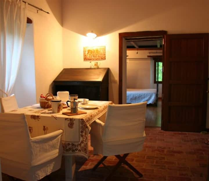 Piscina privata, free wifi, Romagna 5 persone