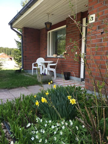 Viihtyisä talo maalla - A cozy countryhouse