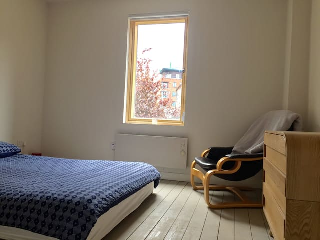 A double room right beside St Patricks Cathedral - Dublin - Hus