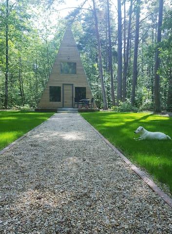 Chalet Tipi niché au milieu des bois