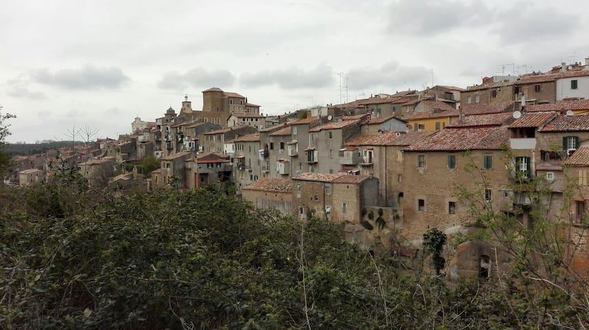 graziosa casa nel borgo antico - Ischia di Castro - Hus