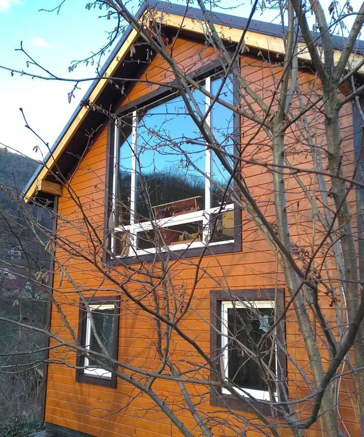 Уютный Дом-домикович