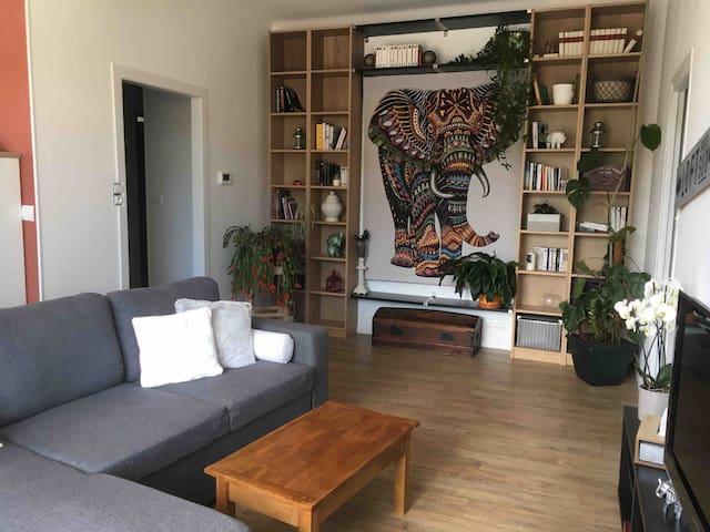 Bel appartement, cosy et chaleureux, 2 à 4 pers