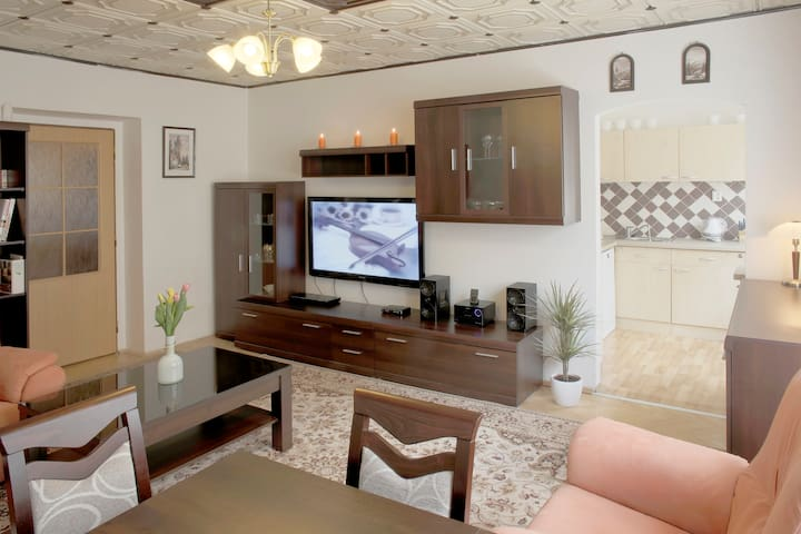 Large apartment for five people near the center