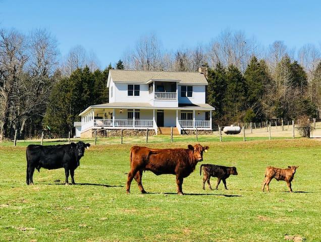 Johnson Creek Farmhouse