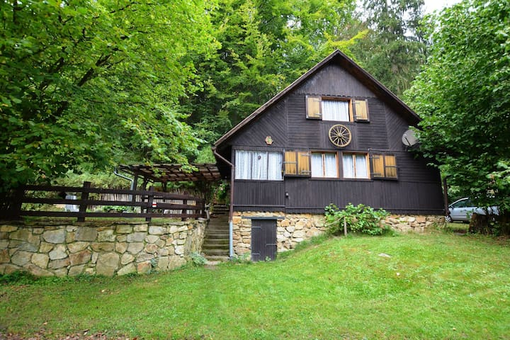 Cosy detached holiday home on the river Lužnice, with private canoe and covered patio
